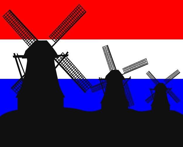 W Holandii dojdzie do wielkiej koalicji /©123RF/PICSEL