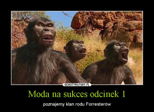 W internecie na temat serialu krążą już legendy... /Demotywatory.pl /internet
