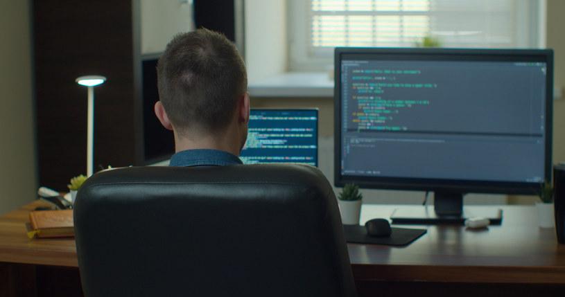 W IT pracownicy szeregowi zarabiają najwięcej /123RF/PICSEL