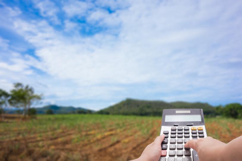 W jakie grunty warto inwestować w dobie koronawirusa? /123RF/PICSEL