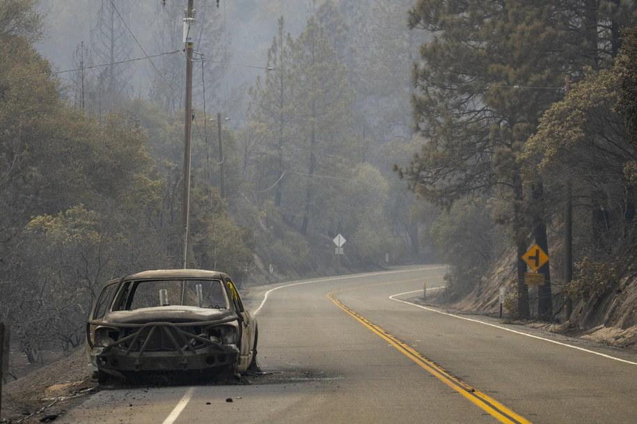 W Kalifornii pożary pochłonęły w tym roku rekordową powierzchnię - 1,24 mln ha /PETER DaSILVA /PAP/EPA