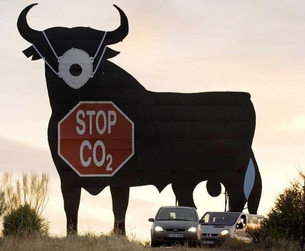 W koncernach samochodowych najwięcej do powiedzenia mają spece od ekologii /AFP