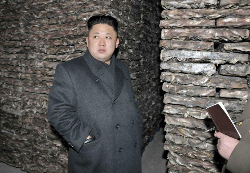W Korei Północnej nigdy oficjalnie nie potwierdzono, jaka jest data urodzin przywódcy, przypuszcza się, że jest nieco po trzydziestce. /AFP