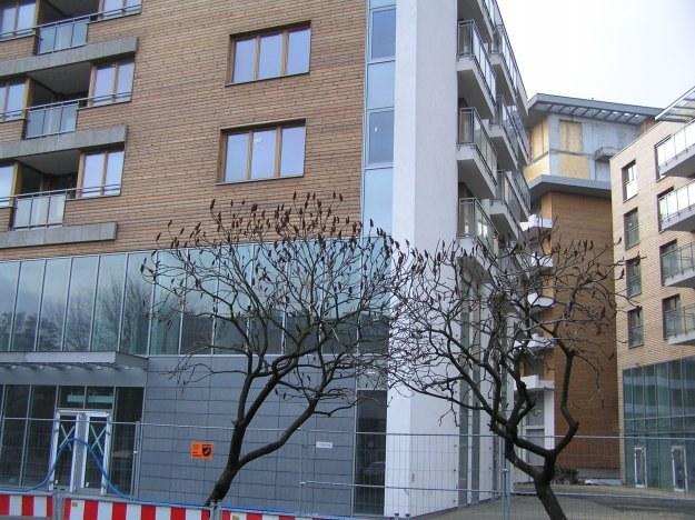 W Krakowie coraz więcej klientów decyduje się na zakup mieszkań w budowie /INTERIA.PL