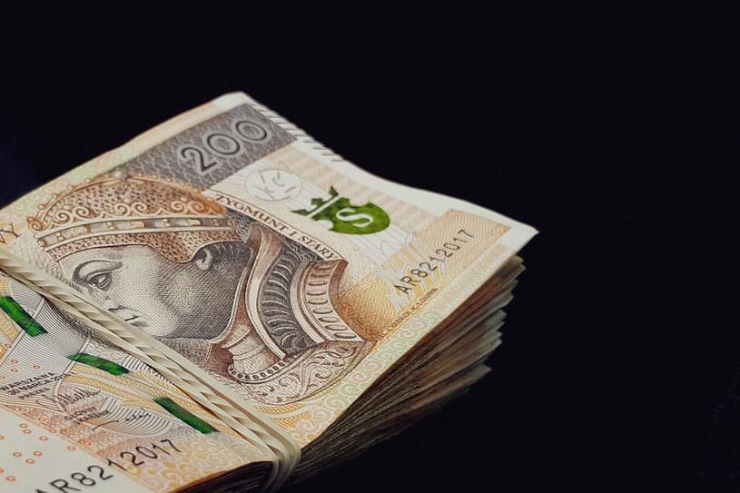 W krótkim terminie złoty może się osłabić /123RF/PICSEL