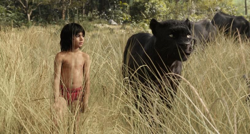 """W """"Księdze dżungli"""" Jona Favreau w Mowgliego wcielił się Neel Sethi /materiały prasowe"""