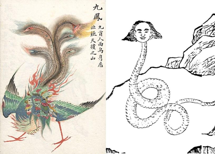 W Księdze Gór i Mórz opisano wiele fantastycznych zwierząt mających zamieszkiwać dalekie krainy. Na ilustracji poniżej widzimy mitycznego ptaka Feniksa o dziewięciu głowach /Wikimedia Commons /domena publiczna