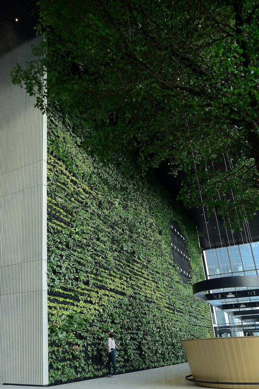 W lobby Generation Park Y powstała 15-metrowa zielona ściana /Informacja prasowa