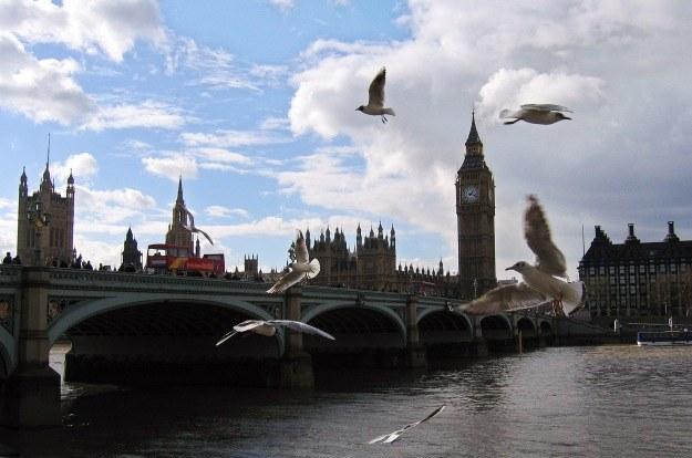 W Londynie najłatwiej o pracę /AFP