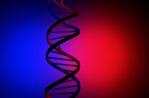 W ludzkim DNA jest drugi, nieznany do tej pory, kod? /123RF/PICSEL