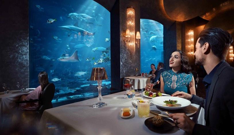 W luksusowej restauracji Ossiano at Atlantis można delektować się owocami morza, podziwiając podwodny świat /materiały prasowe
