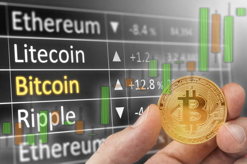W lutym Tesla poinformowała, że kupiła bitcoiny za 1,5 miliarda dolarów. Kryptowaluta zanotowała wtedy wielki skok notowań w ciągu zaledwie kilkudziesięciu godzin. /123RF/PICSEL