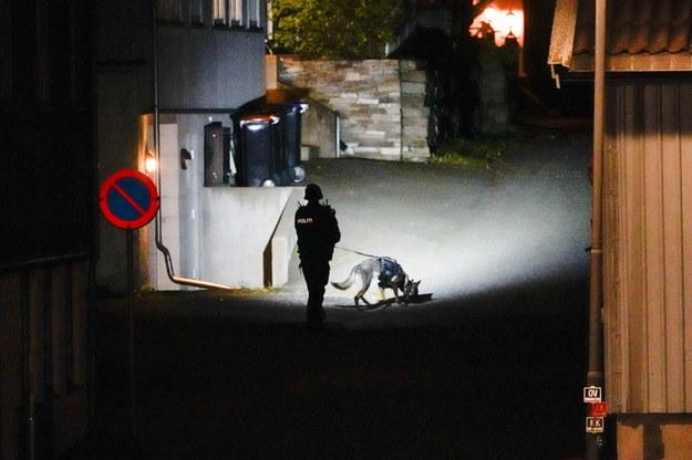 W mieście prowadzona jest akcja policyjna /HAKON MOSVOLD LARSEN NORWAY OUT /PAP/EPA