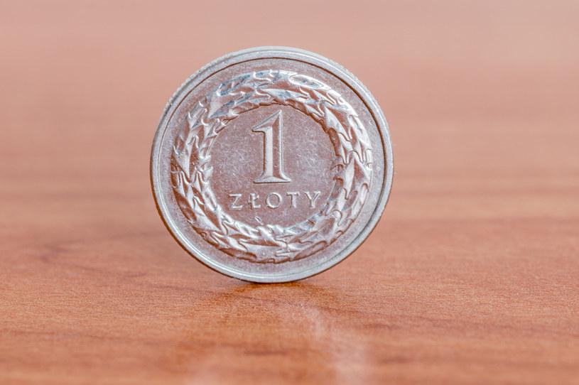W minionym roku złoty stracił na wartości w relacji do większości głównych walut świata /123RF/PICSEL