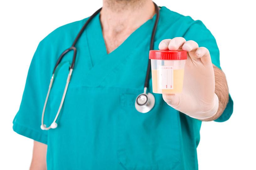 W moczu zdrowego człowieka nie powinny pojawić się cukry, białka, krwinki czerwone, białe oraz bakterie /123RF/PICSEL