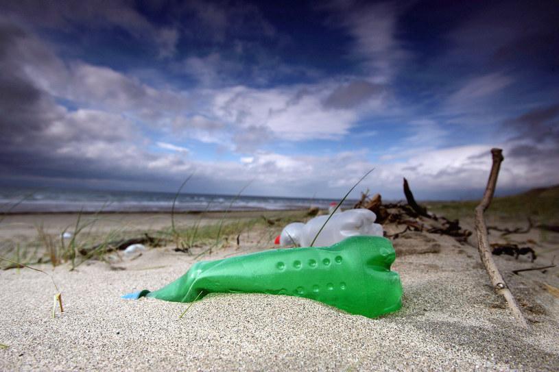 W morzach będzie więcej plastiku niż ryb /Getty Images