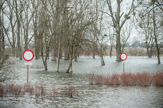 W najbliższych dniach stan wody w rzekach będzie się stabilizował/fot. W. Pacewicz /PAP