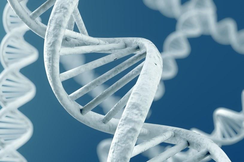 W naszym DNA istnieje druga warstwa informacji /123RF/PICSEL