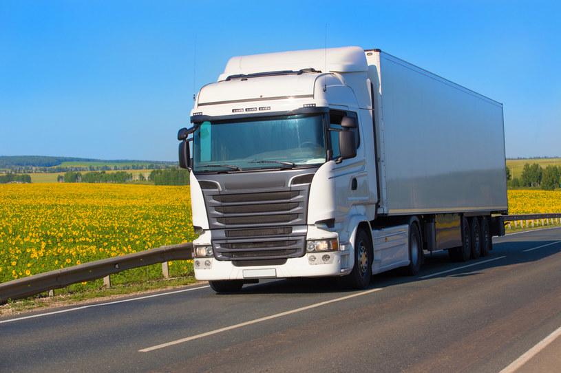 W Niemczech, Francji oraz szczególnie w Austrii pojawia się coraz więcej kontroli związanych z respektowaniem dyrektywy o płacy minimalnej i delegowaniu pracowników w transporcie /123RF/PICSEL