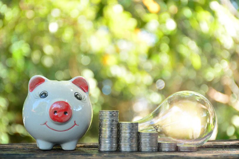 W Niemczech przez wiele dni utrzymywała się nawet ujemna cena energii elektrycznej, czyli kupujący dostawali dopłaty za to, że zużyli prąd /123RF/PICSEL