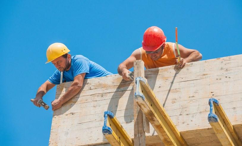 W Niemczech wykonywanie wielu zawodów w branży budowlanej wymaga posiadania mistrzowskiego dyplomu potwierdzonego przez tamtejsze Izby Rzemieślnicze /123RF/PICSEL