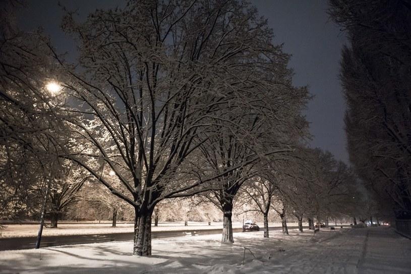 W nocy silny mróz niemal w całym kraju /Adam Burakowski /Reporter