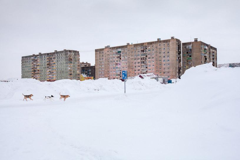 W Norylsku temperatura spada poniżej -50 stopni Celsjusza /Alexander Veryovkin, Copyright Zupagrafika ©2020 /materiały prasowe