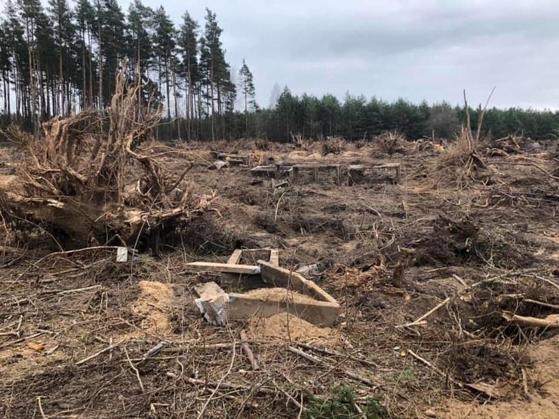 W Nowej Wsi Ełckiej bez pozwolenia wycinano drzewa porastające teren dawnego mazurskiego cmentarza (Źródło: Facebook/Mityczna stolica Mazur Ełk/Lyck) /facebook.com