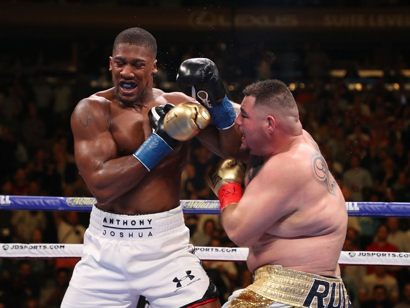 W Nowym Jorku Andy Ruiz jr sensacyjnie pokonał Anthony'ego Joshuę. Jak będzie w rewanżu? /AFP