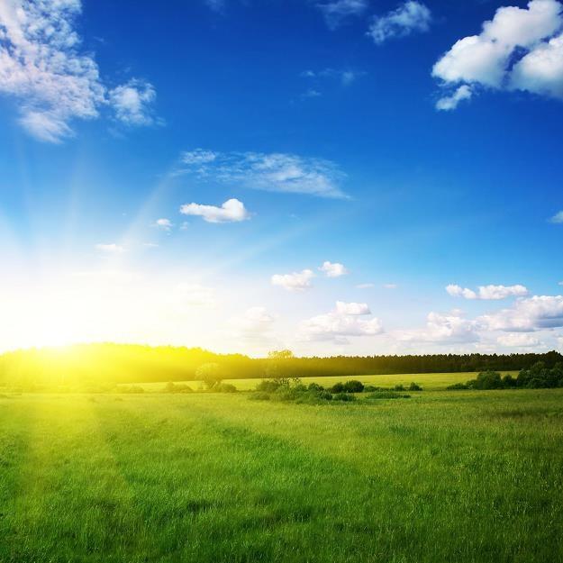 W nowym roku trudniej będzie uzyskać dostęp do gruntów /©123RF/PICSEL