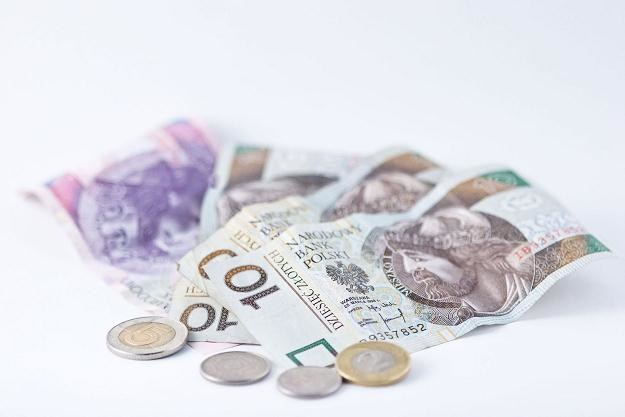 W obecnej sytuacji złoty powinien mieć tendencję do umacniania /©123RF/PICSEL