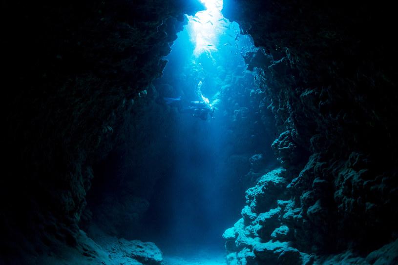 """W oceanicznych głębinach kryją się bakterie, które mogą być """"niewidzialne"""" dla układu odpornościowego człowieka /123RF/PICSEL"""