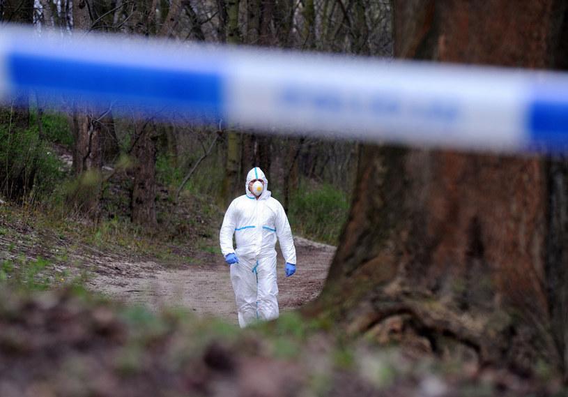 W oczyszczalni ścieków znaleziono martwy płód /Przemek Świderski /Reporter