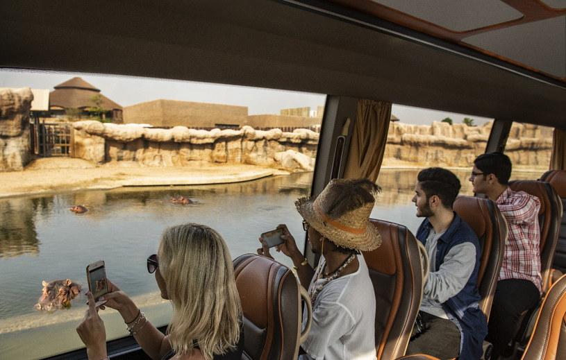 W okolicach Dubaju możemy podziwiać niesamowite widoki /materiały prasowe