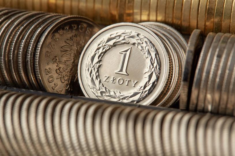W ostatnich dniach w reakcji na sytuację na świecie traci również złoty. /123RF/PICSEL