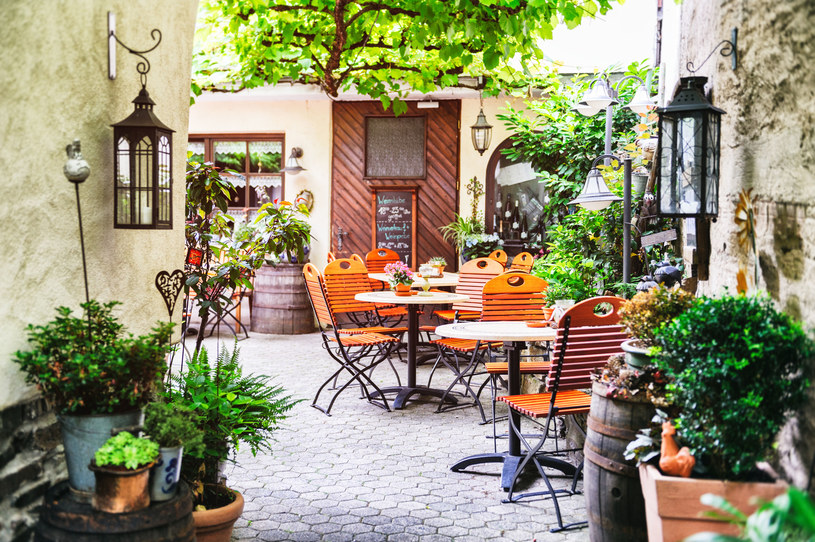 W ostatnich latach zaczęło przybywać kawiarni, w których podstawową część dekoracji stanowią rośliny /123RF/PICSEL