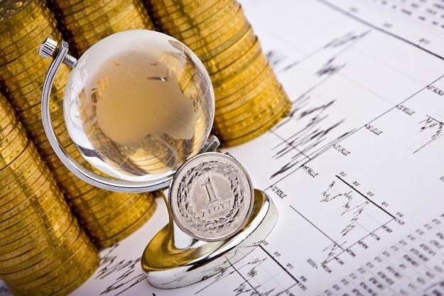 W ostatnich tygodniach złoty tracił do większości walut /©123RF/PICSEL