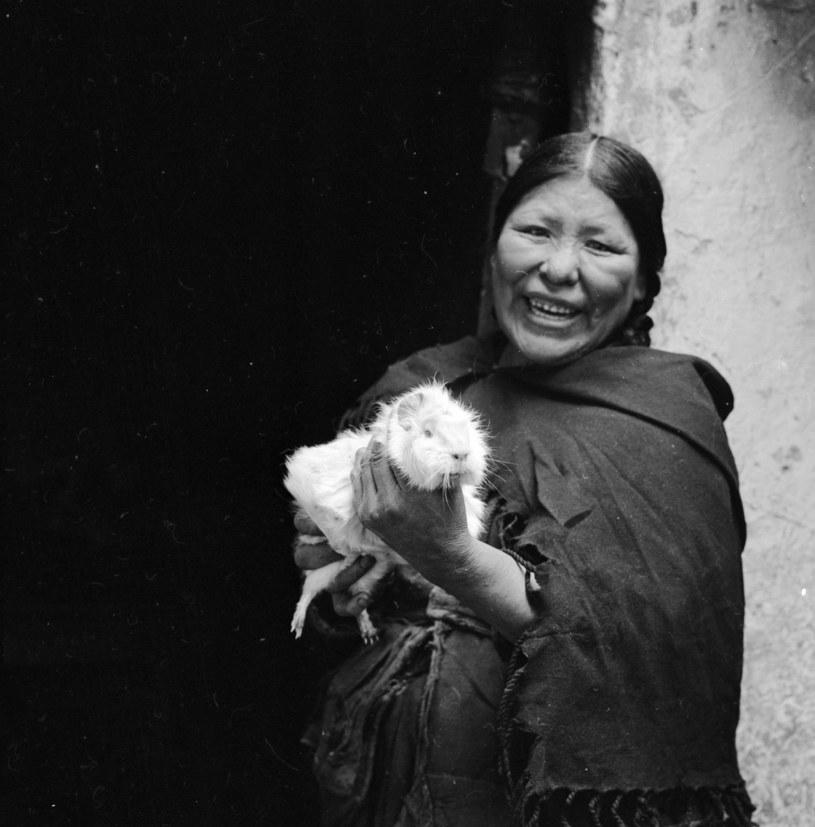 Randki online w Lima Peru