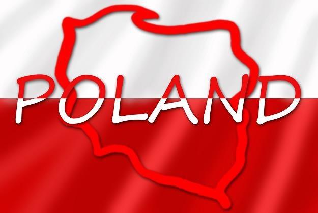 W piątek agencja Moody's podejmie decyzję dot. ratingu Polski /©123RF/PICSEL