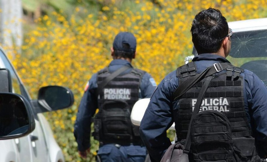 W pobliżu jeziora Chapala w zachodniej części Meksyku znaleziono zwłoki trzynaściorga członków gangu (zdjęcie ilustracyjne) /LENIN OCAMPO TORRES  /PAP/EPA