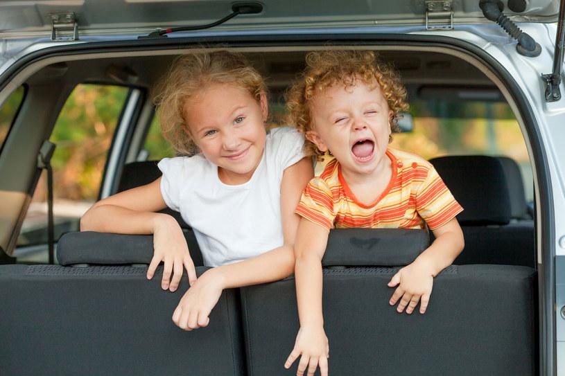 W podróży najważniejsze jest bezpieczeństwo dziecka /123RF/PICSEL