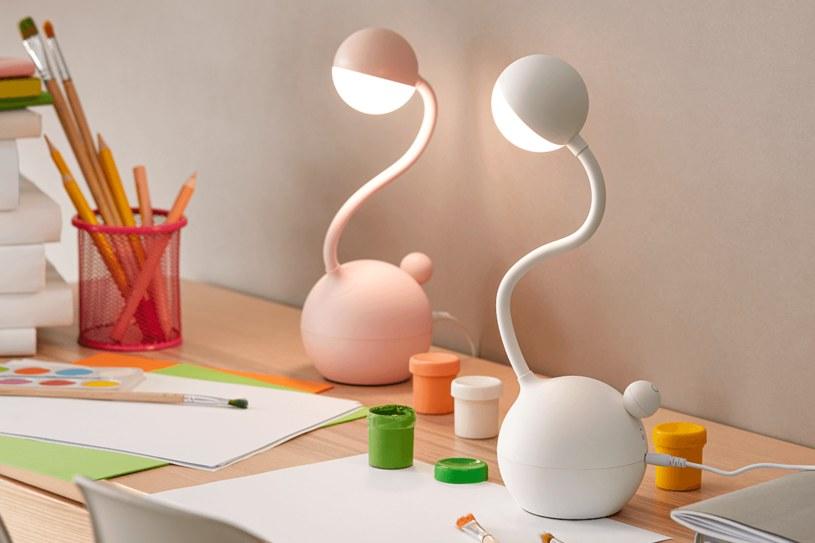 W pokoju ucznia powinna się znaleźć przestrzeń na zabawki oraz hobby /materiał partnera