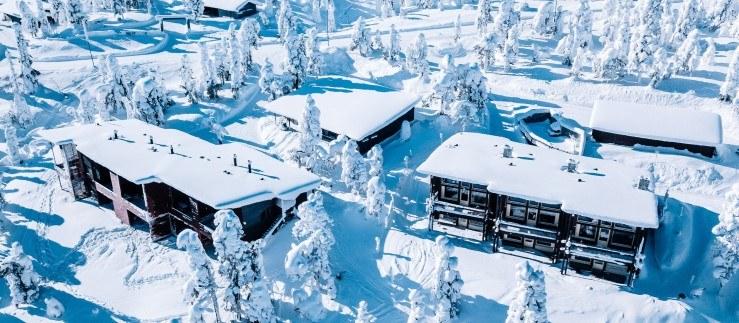 W północnej Finlandii temperatura może spaść 30 stopni poniżej zera /123RF/PICSEL