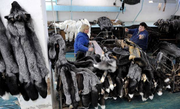 W Polsce funkcjonuje ok. 750 ferm /AFP