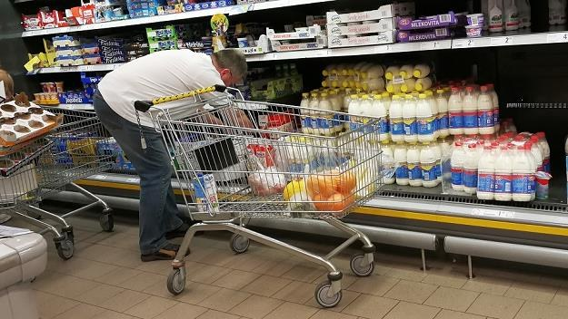 W Polsce na mleku nie da się zarobić. Sieci handlowe wymuszają niskie ceny na producentach /MondayNews