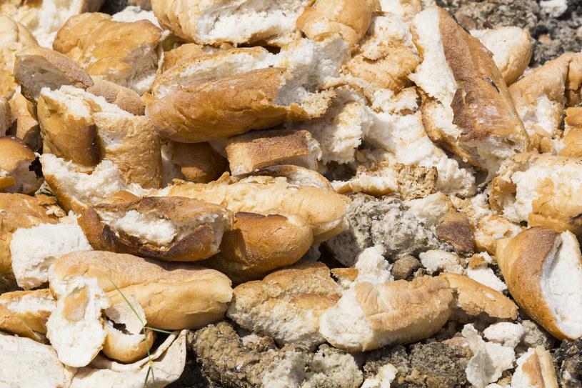 W Polsce niszczy sie tony chleba /123RF/PICSEL