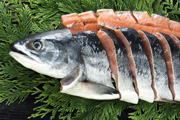 W Polsce powstają hodowle łososia atlantyckiego /©123RF/PICSEL