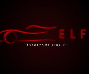 W Polsce rusza charytatywna esportowa liga F1
