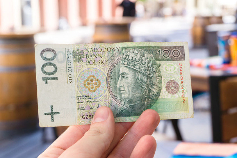 W Polsce są dwa przeszkolone psy do wykrywania waluty /123RF/PICSEL