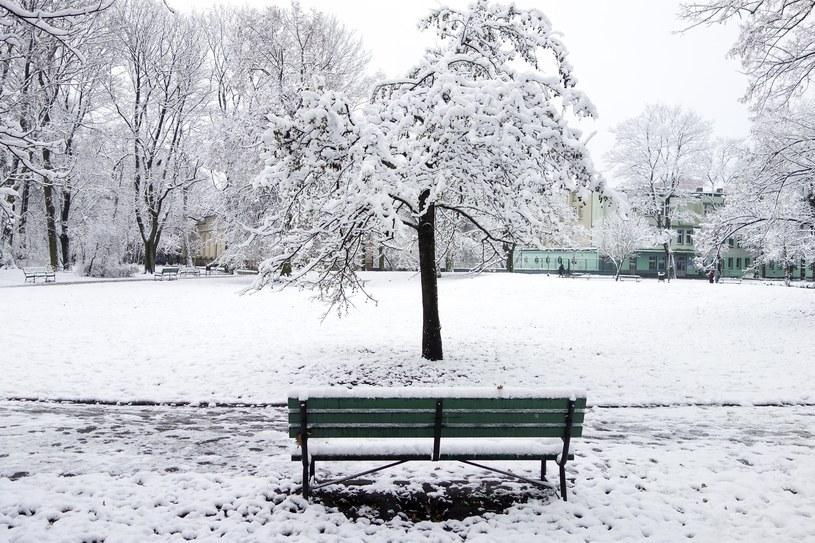 W Polsce zaatakowała zima /Piotr Kamionka/REPORTER /PAP